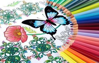 cololiage_uni_888_color.jpg