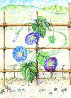 大人の塗り絵コンテスト20120.jpg